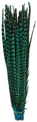 Amazon.com: Pheasant Tails feathers,Hgshow 10Pcs plume Products Assorted Natural feathers,About 20-22 inches,50-55cm long: Arts, Crafts & Sewing Peacock Pillow, Clear Vases, Pheasant Feathers, Feather Crafts, 2018 Color, Home Decor Fabric, Amazon Art, Sewing Stores, Sewing Crafts