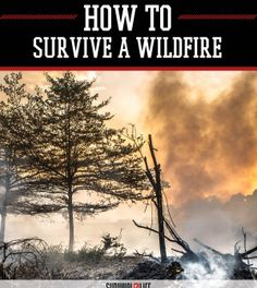 Wildfire Survival Tips: How to Survive Natural Disasters | Survival Skills And Preparedness Tips by Survival Life at http://survivallife.com/2015/06/15/wildfire-survival-tips/