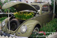 Turun puutarhamessut 2018 Antique Cars, Antiques, Vintage Cars, Antiquities, Antique