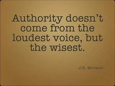 Authority is what the Citizen of the Watch have in Verona. The Prince has the highest authority though.