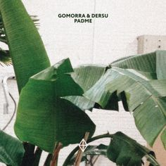 Padme by Gomorra & Dersu - Deep, tropical, housy, jazzy, but not limited to one genre or style, this EP is the quintessence of different influences and preferences applied magnificently onto 4 very club-friendly tracks.
