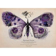 Polish Purple Butterfly Poster Purple Wall Art, Italian Posters, Red Butterfly, Butterfly Wall Art, Polish Posters, Art Posters, Inspirational Wall Art, Designer, Movie Posters For Sale