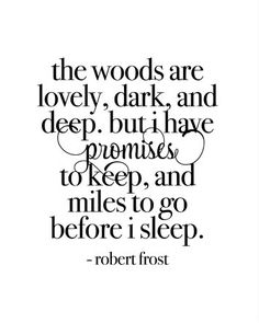 The woods are lovely, dark, and deep. But I have promises to keep, and miles to go before I sleep.
