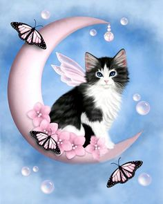 Kitty on the moon Cute Cats And Kittens, I Love Cats, Cool Cats, Crazy Cats, Animal Gato, Image Chat, Here Kitty Kitty, Cat Drawing, Pretty Cats
