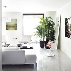 Cool concrete and white-washed walls set the tone in this minimal living room while a picture-frame window creates a wonderful opening to the garden.  (When u can't paint ur walls)