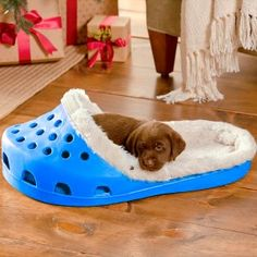 """Dog bed made out of an end table. DIY wood dog bed Think I will do an """"A"""" and an """"R"""" and put them in the playroom How cute is this pet bed? Animals And Pets, Funny Animals, Cute Animals, Baby Animals, Cute Puppies, Cute Dogs, Puppies Stuff, Morkie Puppies, Small Puppies"""
