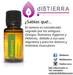 Salud Natural, Doterra Essential Oils, Healthy Living, Remedies, Healing, Personal Care, Beauty, Illustrations, Google