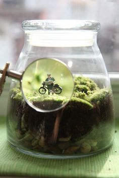 "There is something so curious and clever about these tiny world terrariums - (""Bike Break"" by Twig Terrariums)"