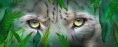 Wild Eyes - Snow Leopard