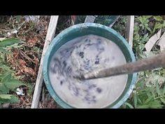 How to make ash fertilizer for the garden/ Cum facem fertilizatorul cu c... Diy Greenhouse Plans, Organic Fertilizer, Cottages, Tomatoes, Solar, The Creator, Channel, Gardening, Agriculture