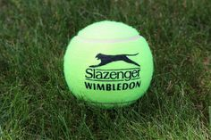 The Wimbledon Experience   Crowne Plaza Heathrow – 10th July 2015: £179