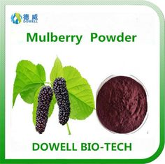Mulberry Powder - Dowell Bio-Tech focus on producing 100% pure natural fruit and vegetable powders by the advanced manufacturering technology. All the raw materials comply with organic standards, contains variety of vitamins and acids; With pure flavor, good taste, super water solubility, can be widely used in pharmaceutical and health care products, health food, infant food, beverage, dairy products, sport drinks and other fields.