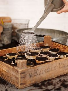 .Great for starting plants; pumpkin, peppers, herb garden. Terra Cotta small pots with wooden box.