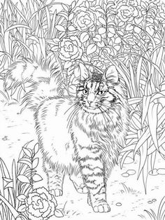 100 Best Cats Adult Coloring Pages Images Cat Coloring Page