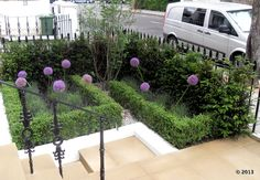 Box hedging and lavender and alliums for front garden - Modern Thuja Smaragd, Lavender Hedge, Boxwood Garden, Garden Hedges, Front Flower Beds, Box Hedging, Small Front Gardens, Garden Pool, Garden Boxes