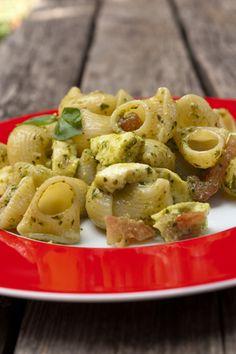 Cold pasta salad with pesto, mozzarella and tomatoes