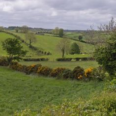 Monaghan, Ireland; This is where a part of the family came from! Beautiful. A bucket list must.