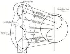 Taiji Ball Qigong - Conditioning Theory of Two Polarities in a Human Body repinned by http://www.medischeqigong.com/ #qigong