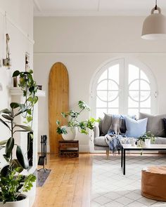 Making your home awesome since ⚡ Your go-to source of inspiration for home, design & lifestyle. Home Tours, How To's and the Latest in Homewares. Arched Windows, Source Of Inspiration, House Colors, Interior Styling, Indoor Plants, Hunting, Art Deco, Lounge, Outdoor Decor