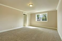 Vivid Cleaning Blog: How long to wait before your carpets are fully dry...