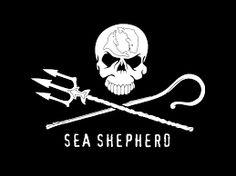 sea shepherd logo vector - Google Search
