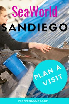 Can Plan, Plan A, How To Plan, San Diego Vacation, A Sea, Amusement Parks, Sea World, Plan Your Trip, Amazing