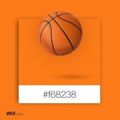 Color Palette Inspiration | Athlete's  Orange | #f68238