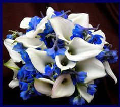 calla lilly and blue delphinium - exquisite  WOW what a color combo!