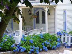 Gorgeous blue and white house with very blue hydrangeas