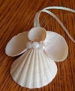 to Make Seashell Christmas Ornaments Sea shell angel - Now I know what to do with some of the shells I collected this summer! LOLSea shell angel - Now I know what to do with some of the shells I collected this summer! Angel Crafts, Christmas Projects, Holiday Crafts, Christmas Crafts, Coastal Christmas, Christmas Ideas, Christmas Decorations Nz, Christmas Christmas, Vintage Christmas