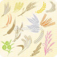 collection d'épis de blé — Illustration #22449235