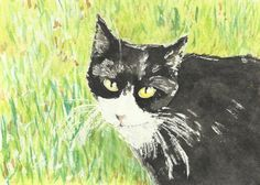 Cats Painted In Watercolor Day 9 September 2016 pet portraits