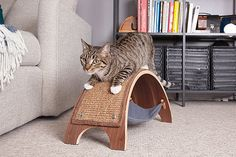 The QuickSnap Replaceable Cat Scratcher is one of the most innovative cat products I've seen in a while! It addresses two important questionsevery cat owner asks when picking out a scratcher for their cat, 1) which surface does my cat prefer to scratch on? and 2) is the scratching surface easily replaceable once itis destroyed?...Read More