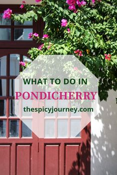 Find out what you can do in the picturesque Pondicherry Visit Thailand, Thailand Travel, Cool Places To Visit, Places To Travel, India Travel Guide, Travel Tips, Yoga Teacher Training India, Weather In India, Backpacking India