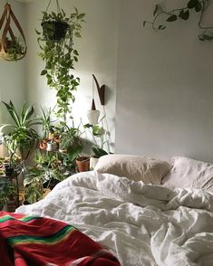 Spent the entire day doing a massive (like epic) restock of the shop and with that we're ready to crawl into bed! Mind if we cozy up here Thanks for sharing in We post a new photo from each week. Tag your indoor green oasis for a chance to be featured. Bedroom Plants, Bedroom Decor, Bedroom Ideas, Bed With Posts, Beautiful Bedrooms, Indoor Plants, Room Inspiration, Cribs, Nursery