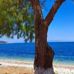 Όνειρο ζω #xatzigiannis  Location #mytilene P. Copyright #electraasteri