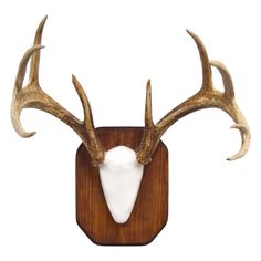 custom barnwood european skull mount plaque for taxidermy.html