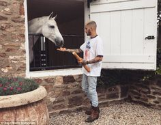 'Heaven': Gigi Hadid, proved to be absolutely smitten with her boyfriend Zayn Malik, as she shared a lovely snap of him feeding a horse on a farm on Tuesday Zayn Malik Fotos, Mtv, Grupo One Direction, Zayn Mallik, Love Of My Life, My Love, Star Wars, Wattpad, One Direction Pictures