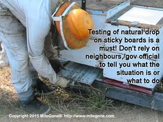 Testing of natural drop on sticky boards is a must! Don't rely on neighbours or government officials to tell you what the situation is or what to do. Click through this image to learn more about preliminary testing before treatment. Bee Skep, Bee Keeping, Being Used, To Tell, Bees, How To Become, Honey, Told You So, Boards