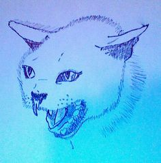Look at the cat I drew!