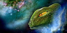The Black Manik: ¿Cómo se vería un planeta controlado por los repti...