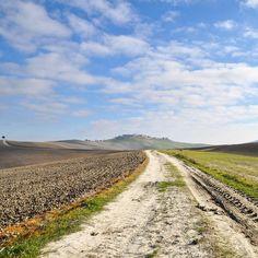 Follow the path  #Asciano4stagioni style  Orizzonti ondulati tra le #CreteSenesi strade sinuose tra le dune di creta che si perdono oltre l'infinito un paesaggio che nutre lo spirito. #AroundSiena #stradediasciano
