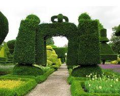 topiary  | gardenhistorygirl: Topiary: Martial Art?