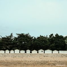 """ⓜⓐⓡⓘⓣⓘⓜⓐ photo series by @nikosono 