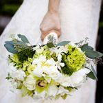 bukiet ślubny: hortensja, storczyk Cymbidium, eustoma, frezja