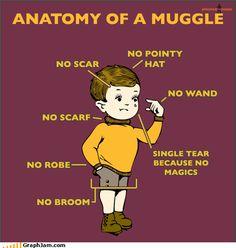 I have a scar...and I scarf...a robe...a broom..OMG I'M PART WIZARD!