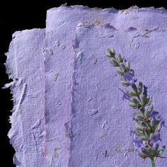 handmade paper with lavender flowers and seeds