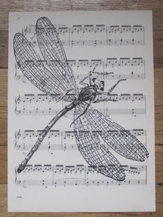 dragonfly vintage sheet music
