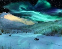 Alaska Nightlife
