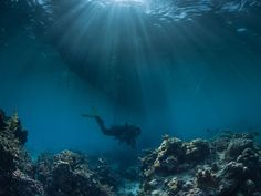 Simply Scuba Blog » Where Should I Mount My Dive Knife?